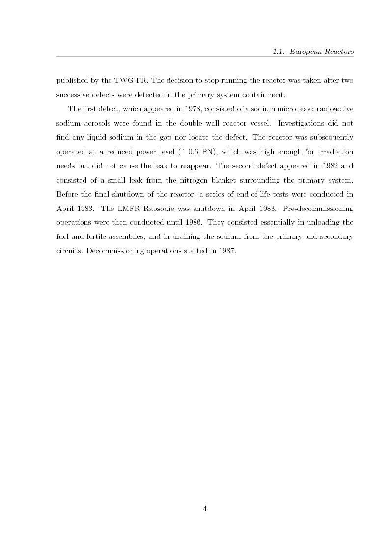 Anteprima della tesi: Innovative Steam Generator for Sodium-Cooled Fast Reactors, Pagina 4