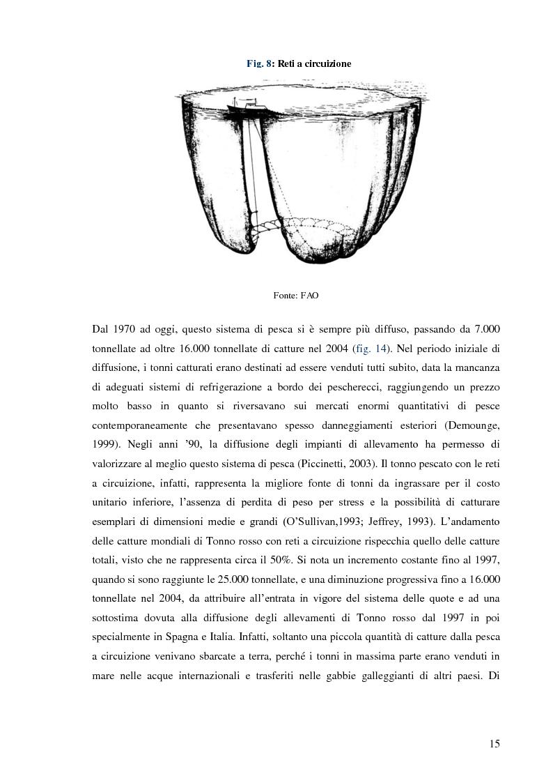 Anteprima della tesi: Pesca e allevamento del tonno rosso: analisi economica della maricoltura, Pagina 10