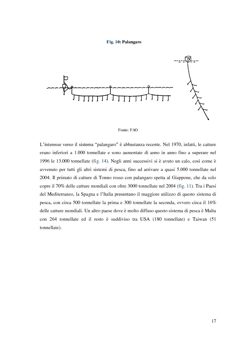 Anteprima della tesi: Pesca e allevamento del tonno rosso: analisi economica della maricoltura, Pagina 12