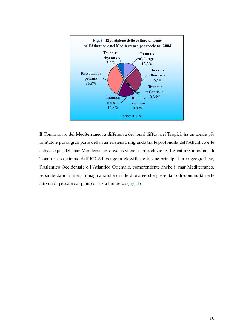 Anteprima della tesi: Pesca e allevamento del tonno rosso: analisi economica della maricoltura, Pagina 5