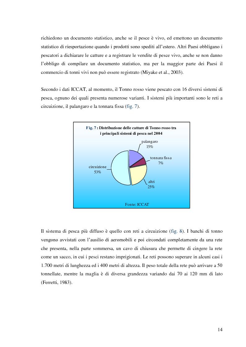 Anteprima della tesi: Pesca e allevamento del tonno rosso: analisi economica della maricoltura, Pagina 9