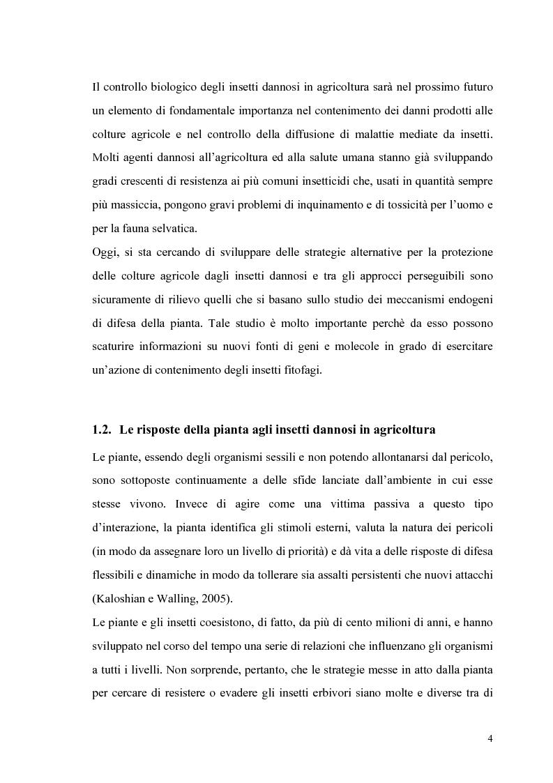 Anteprima della tesi: Profili di espressione di geni di difesa in genotipi di pomodoro, Pagina 2