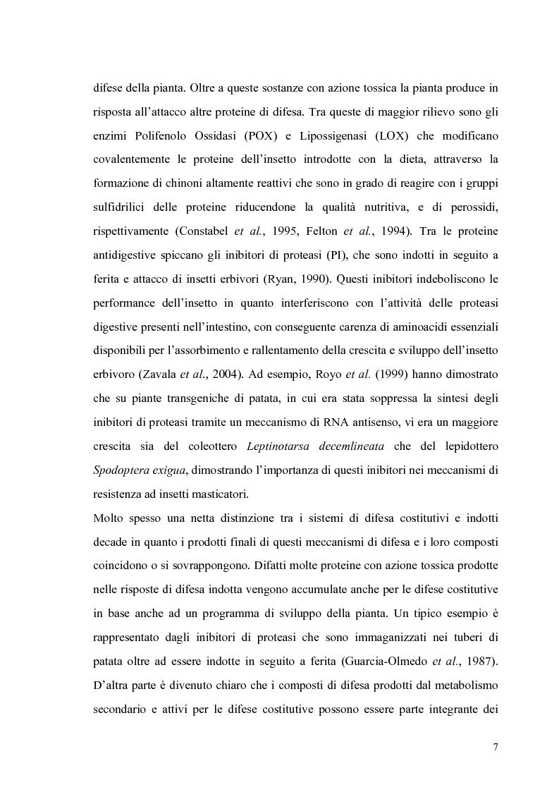 Anteprima della tesi: Profili di espressione di geni di difesa in genotipi di pomodoro, Pagina 5