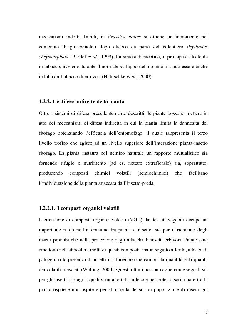 Anteprima della tesi: Profili di espressione di geni di difesa in genotipi di pomodoro, Pagina 6