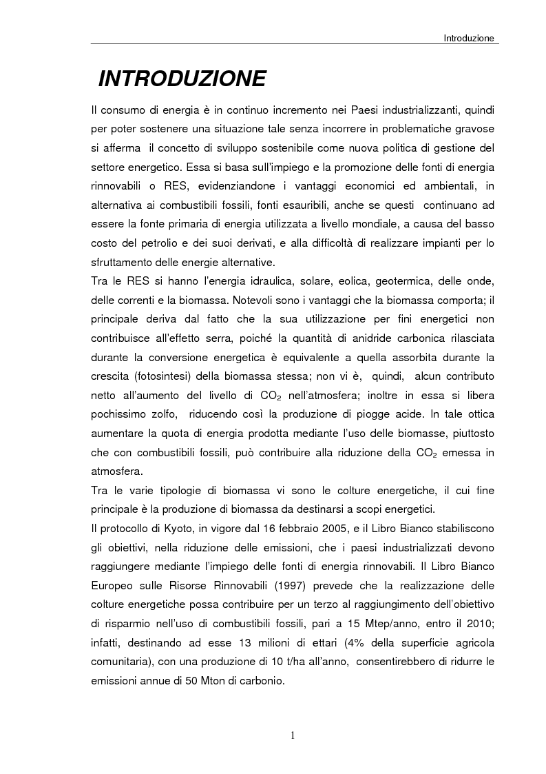 Anteprima della tesi: Analisi tecnica, economica ed ambientale di un campo coltivato a biomassa legnosa, Pagina 1