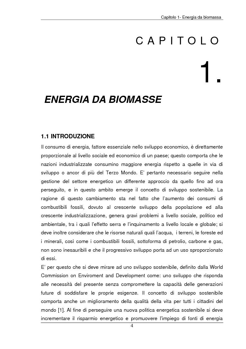 Anteprima della tesi: Analisi tecnica, economica ed ambientale di un campo coltivato a biomassa legnosa, Pagina 4