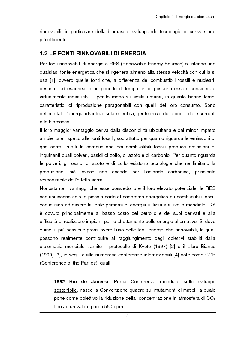 Anteprima della tesi: Analisi tecnica, economica ed ambientale di un campo coltivato a biomassa legnosa, Pagina 5