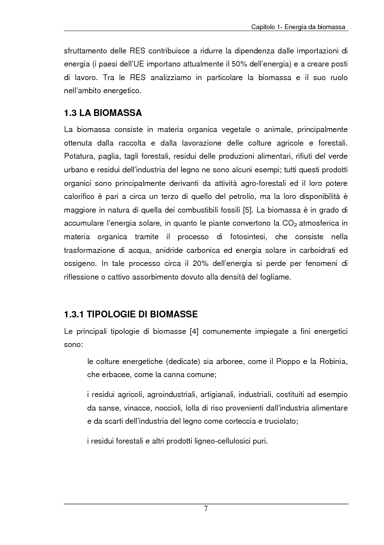 Anteprima della tesi: Analisi tecnica, economica ed ambientale di un campo coltivato a biomassa legnosa, Pagina 7