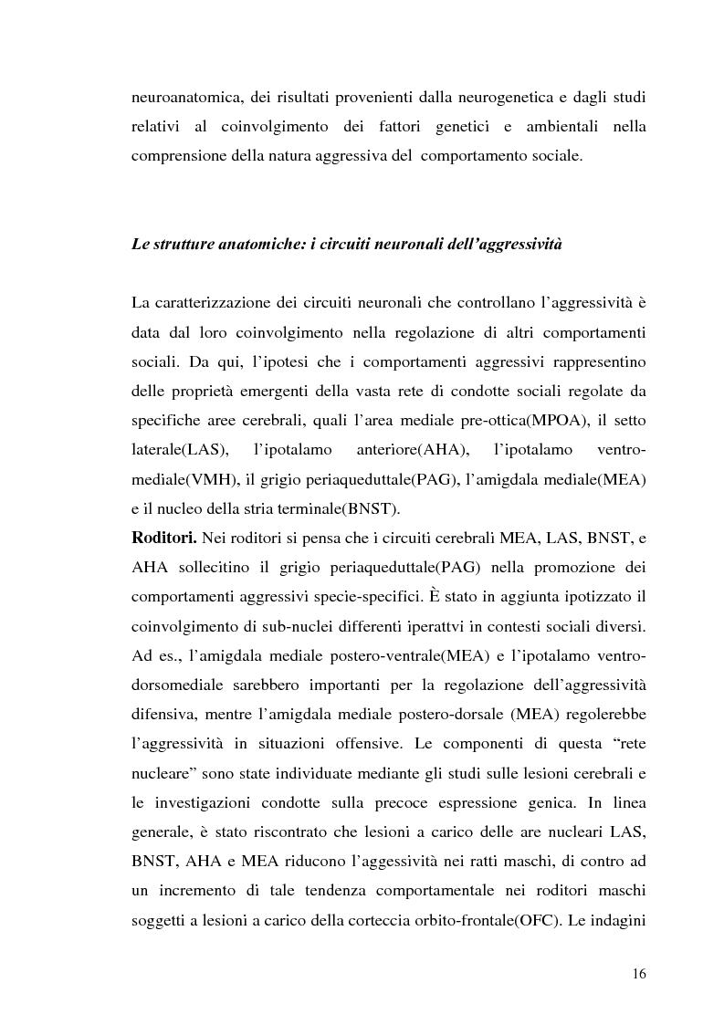 Anteprima della tesi: L'interazione tra fattori genetici e ambientali nelle condotte aggressive e antisociali degli adolescenti: il ruolo del polimorfismo MAOA (monoamina ossidasi-A), Pagina 13
