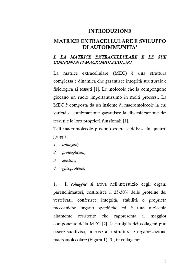 Anteprima della tesi: Risposta immunitaria umorale verso componenti della matrice extracellulare in pazienti con malattia celiaca, Pagina 1