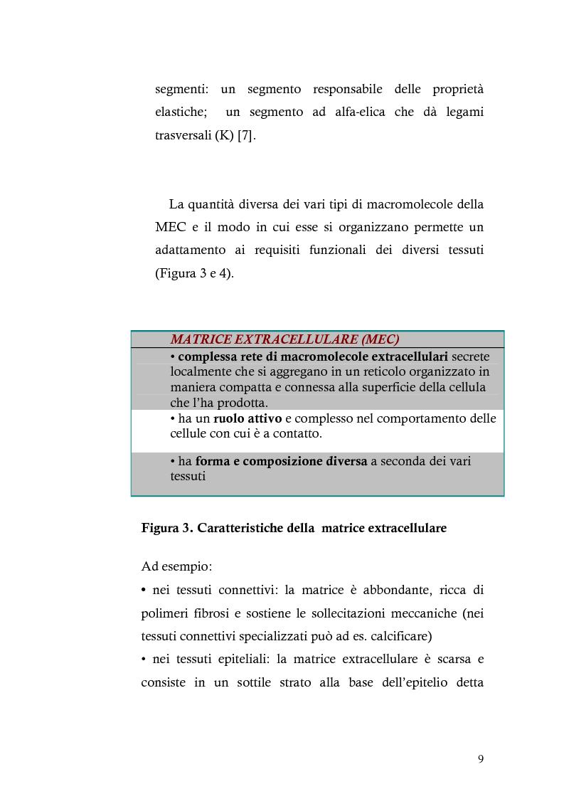 Anteprima della tesi: Risposta immunitaria umorale verso componenti della matrice extracellulare in pazienti con malattia celiaca, Pagina 5