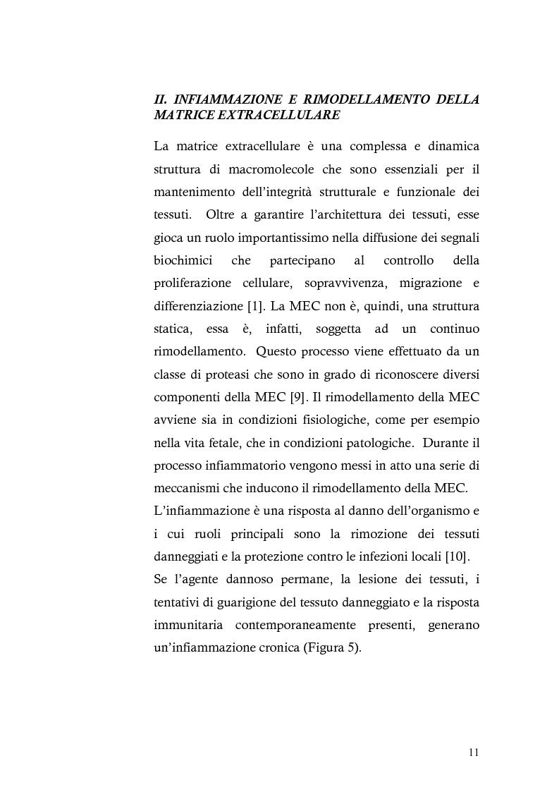 Anteprima della tesi: Risposta immunitaria umorale verso componenti della matrice extracellulare in pazienti con malattia celiaca, Pagina 7