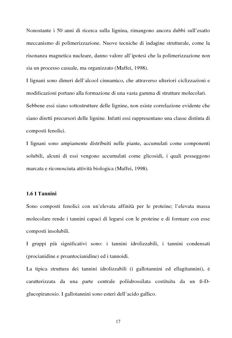 Anteprima della tesi: Piante micorrizate di carciofo: fenoli totali e attività antiossidante nei capolini, Pagina 15