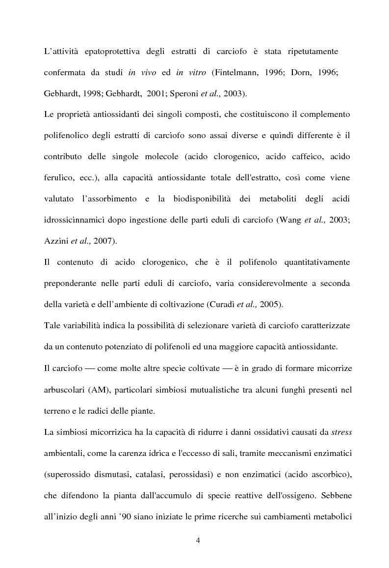 Anteprima della tesi: Piante micorrizate di carciofo: fenoli totali e attività antiossidante nei capolini, Pagina 2