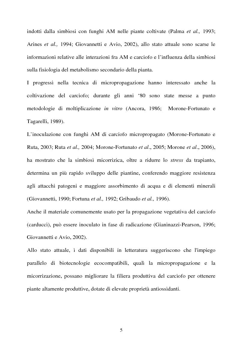 Anteprima della tesi: Piante micorrizate di carciofo: fenoli totali e attività antiossidante nei capolini, Pagina 3
