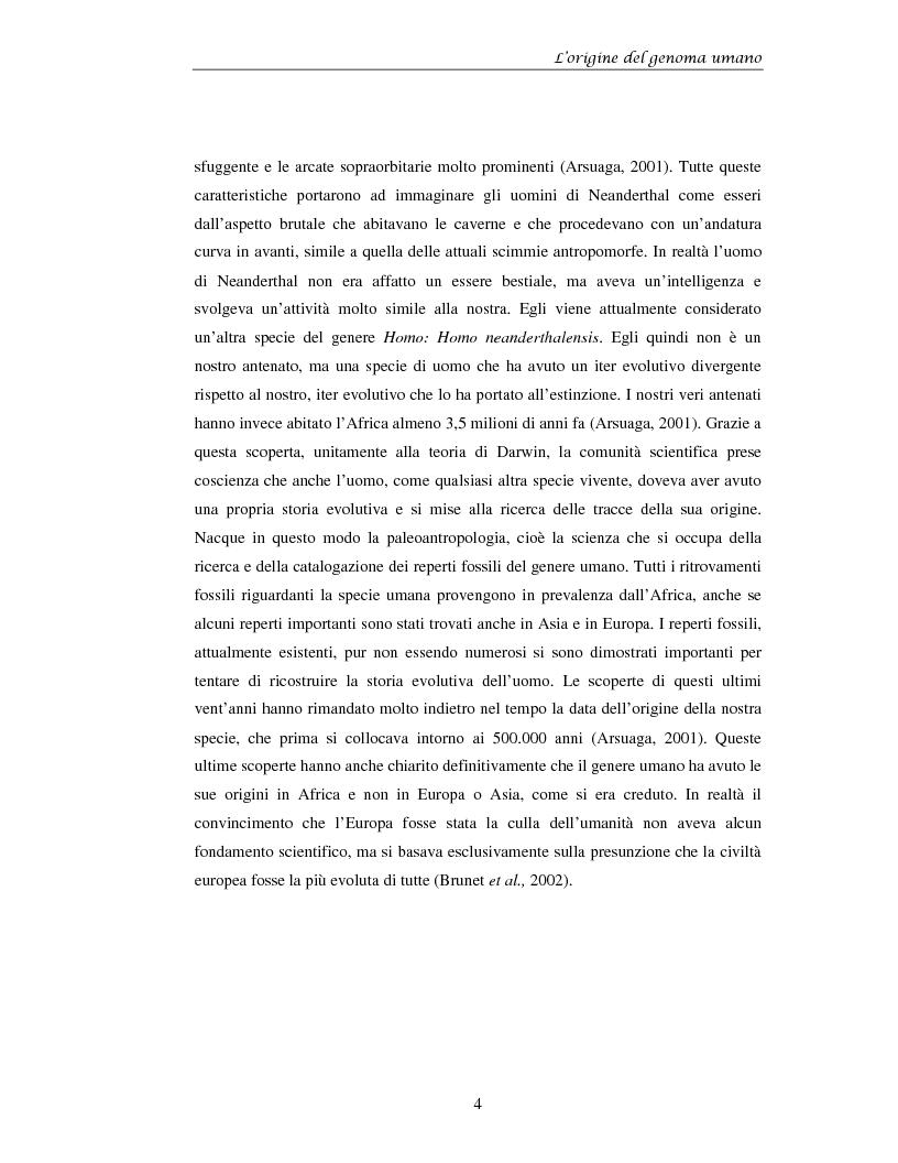Anteprima della tesi: La prospettiva citogenetica molecolare sull'origine del genoma umano, Pagina 4
