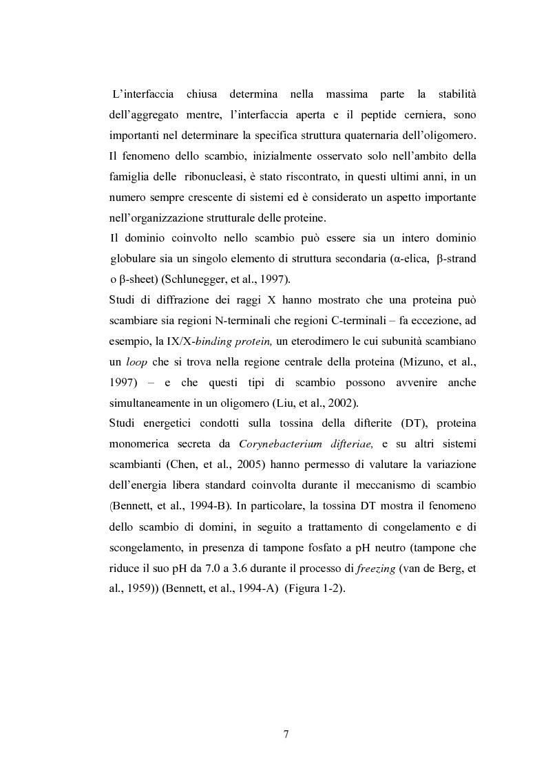 Anteprima della tesi: Ruolo dei peptidi cerniera nella formazione di dimeri non-covalenti della ribonucleasi bovina pancreatica mediante scambio di domini strutturali, Pagina 4