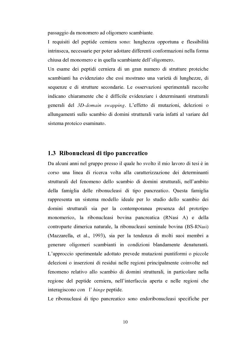 Anteprima della tesi: Ruolo dei peptidi cerniera nella formazione di dimeri non-covalenti della ribonucleasi bovina pancreatica mediante scambio di domini strutturali, Pagina 7
