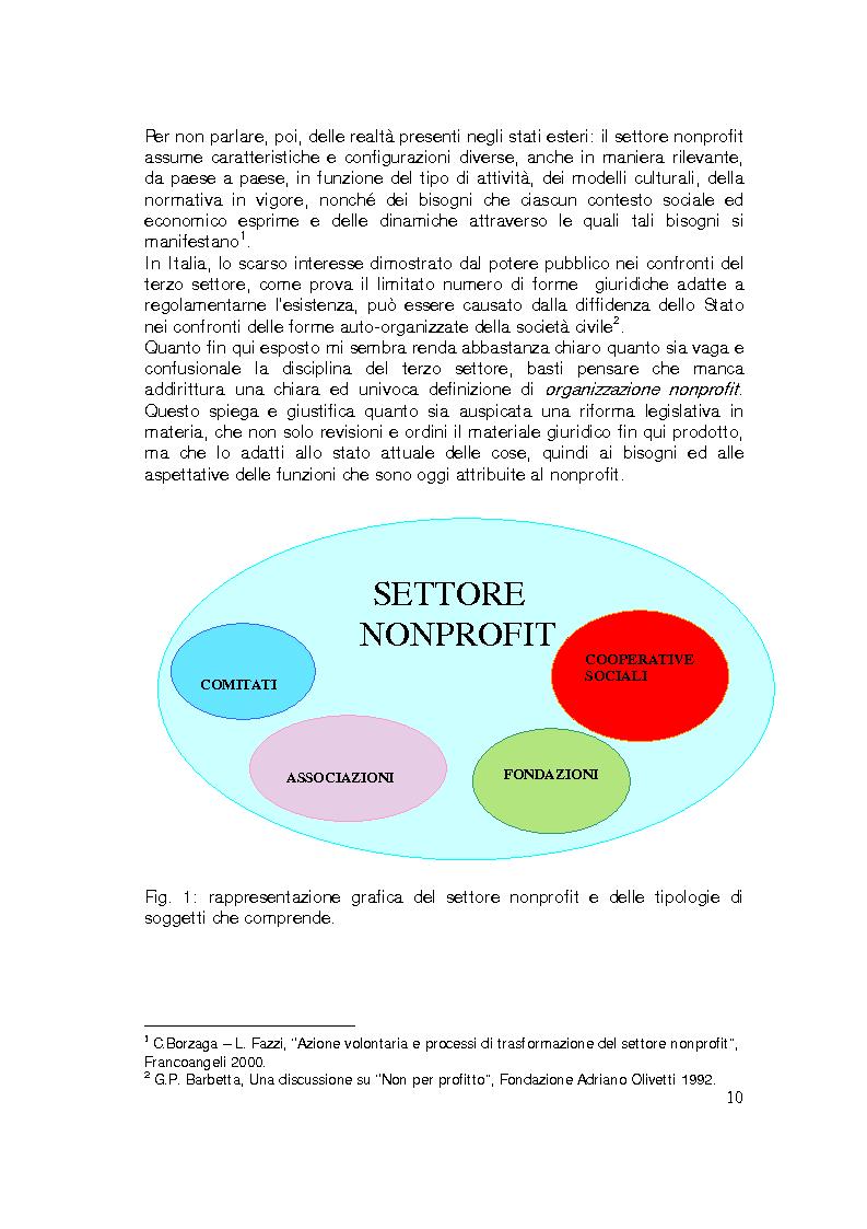 Anteprima della tesi: Sviluppo internazionale delle organizzazioni nonprofit, Pagina 7