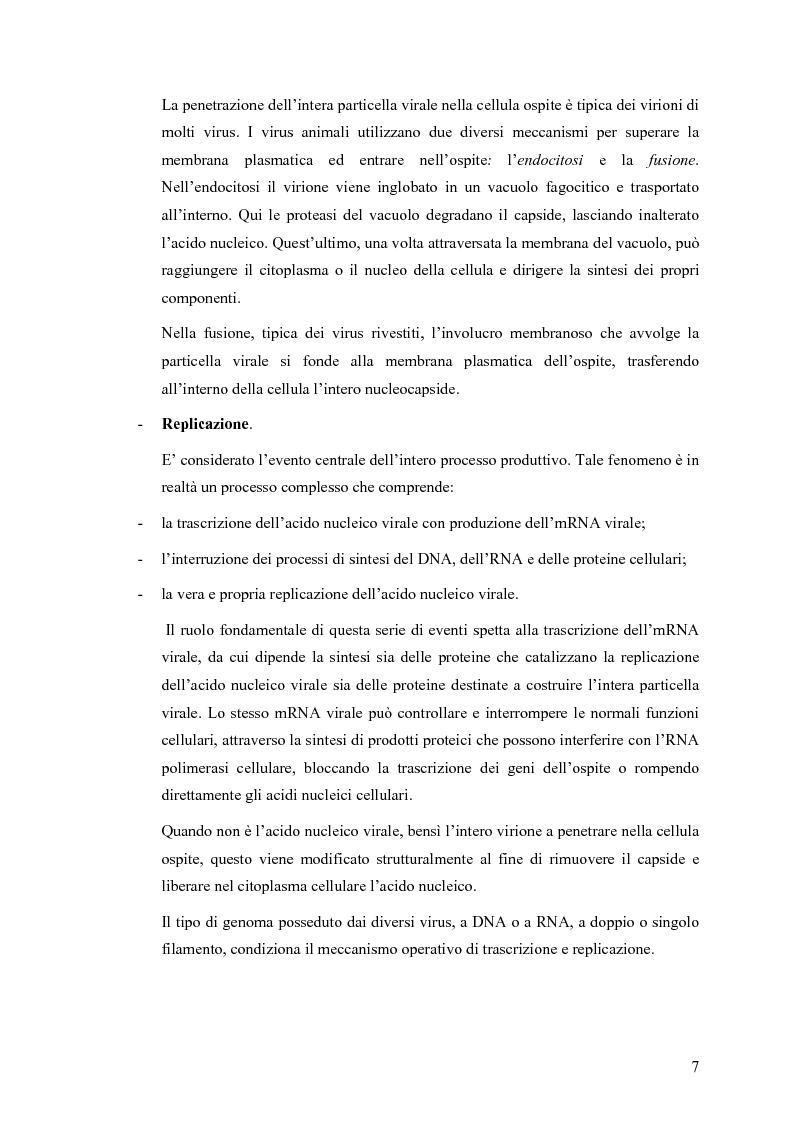 Anteprima della tesi: Il ruolo degli Herpesvirus nella patologia del sistema nervoso centrale: outcome clinico e trattamento ri/abilitativo, Pagina 5