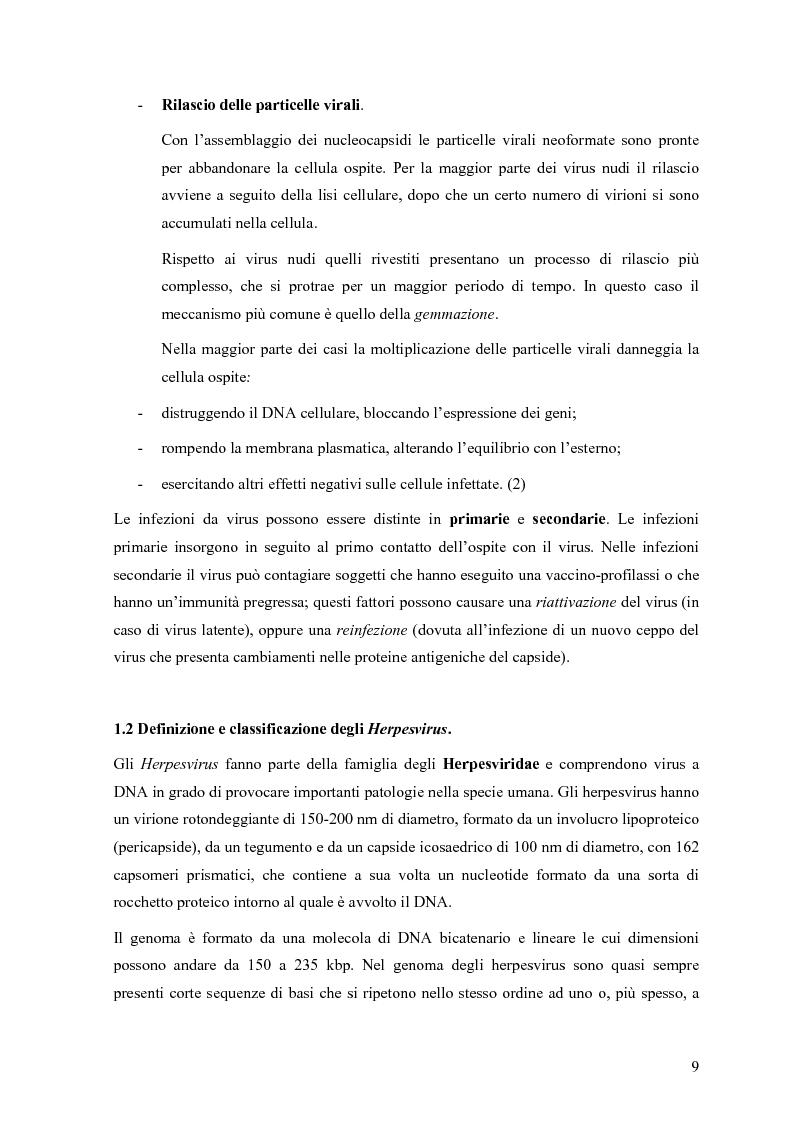 Anteprima della tesi: Il ruolo degli Herpesvirus nella patologia del sistema nervoso centrale: outcome clinico e trattamento ri/abilitativo, Pagina 7