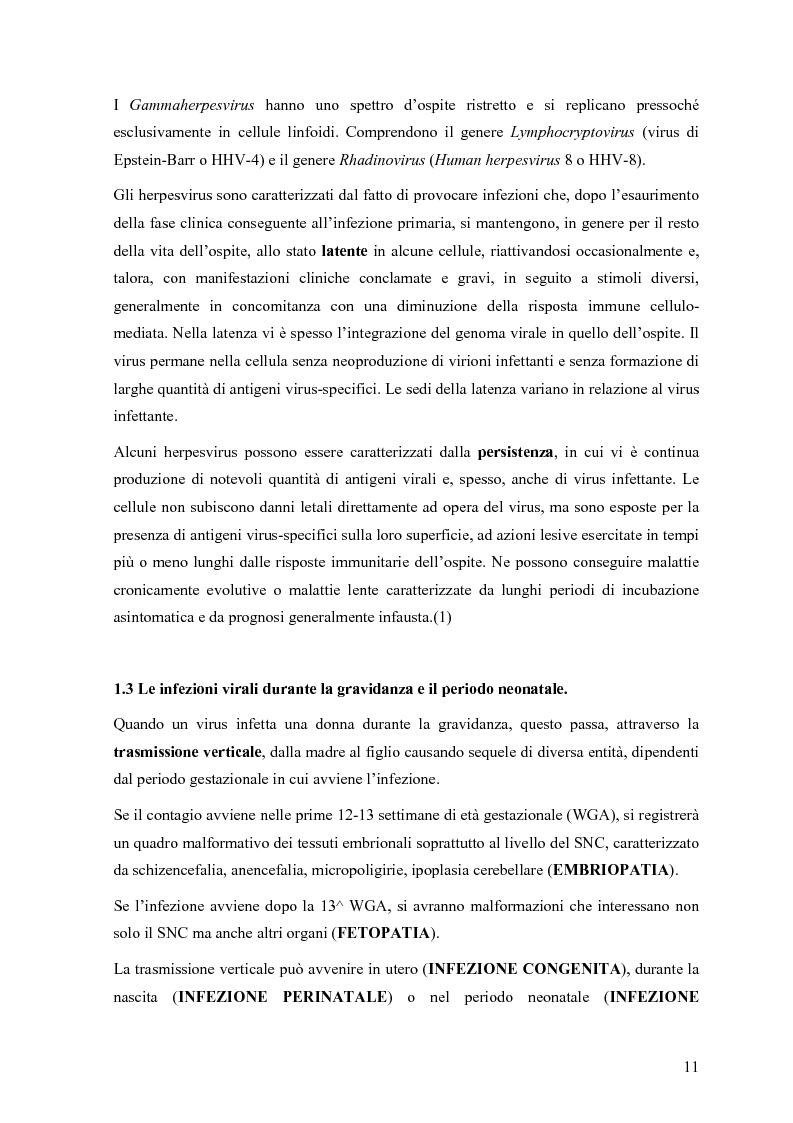 Anteprima della tesi: Il ruolo degli Herpesvirus nella patologia del sistema nervoso centrale: outcome clinico e trattamento ri/abilitativo, Pagina 9