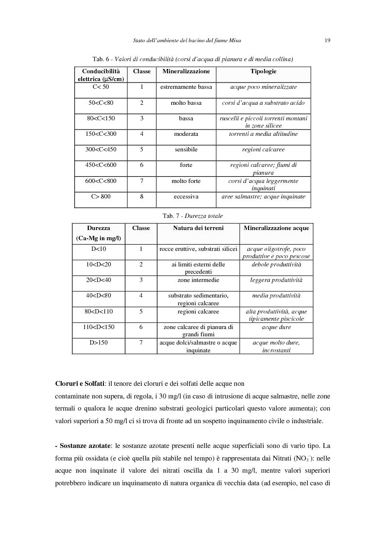 Anteprima della tesi: Stato dell'ambiente del bacino del fiume Misa (Marche), Pagina 11