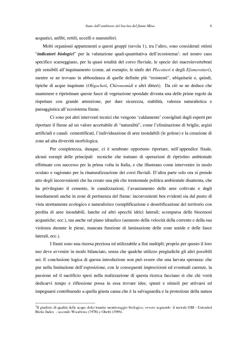 Anteprima della tesi: Stato dell'ambiente del bacino del fiume Misa (Marche), Pagina 5
