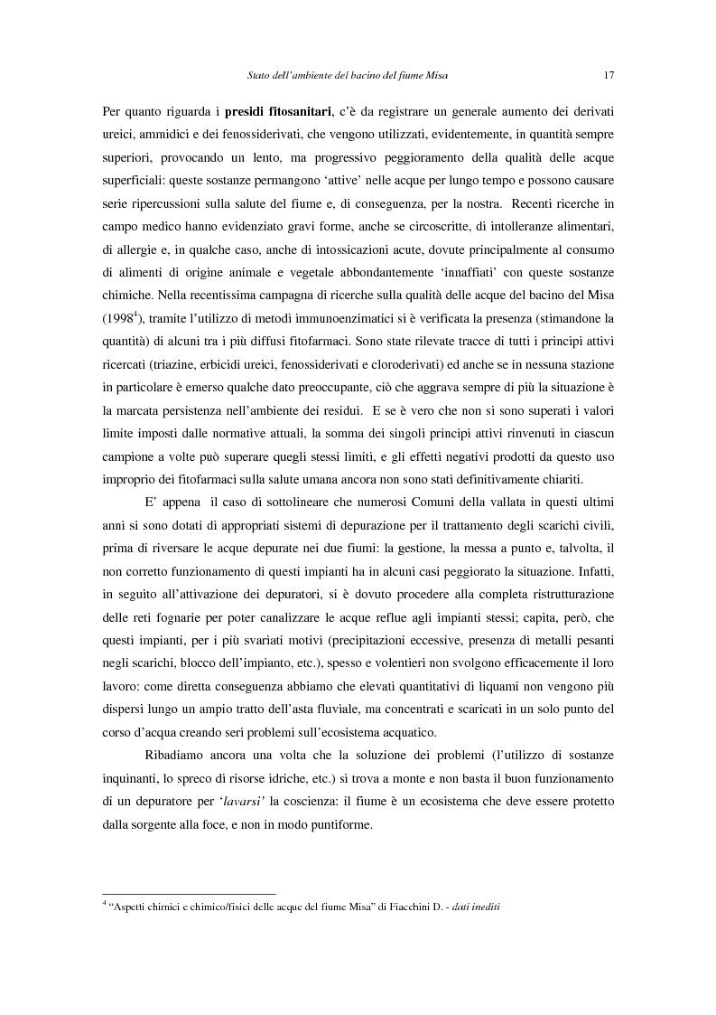 Anteprima della tesi: Stato dell'ambiente del bacino del fiume Misa (Marche), Pagina 9