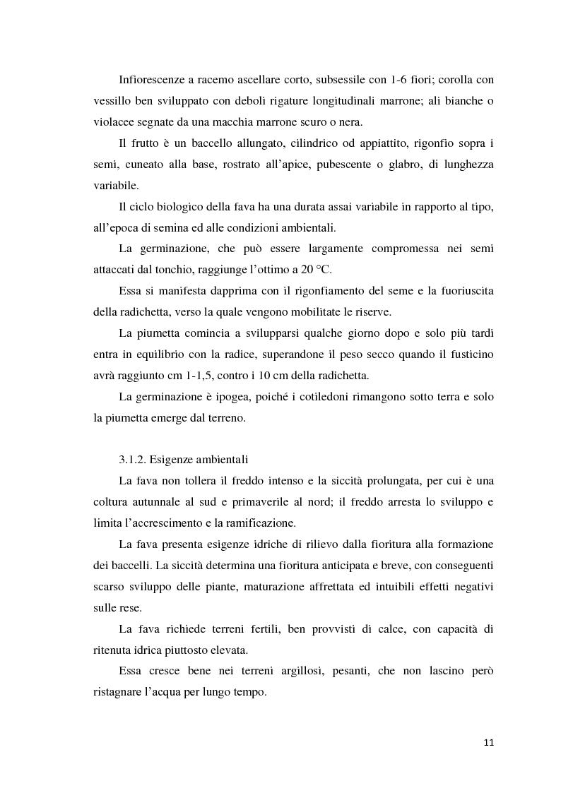Anteprima della tesi: Quantificazione dell'azotofissazione in leguminose foraggere e stima della quota di azoto trasferito al cereale in successione, Pagina 11