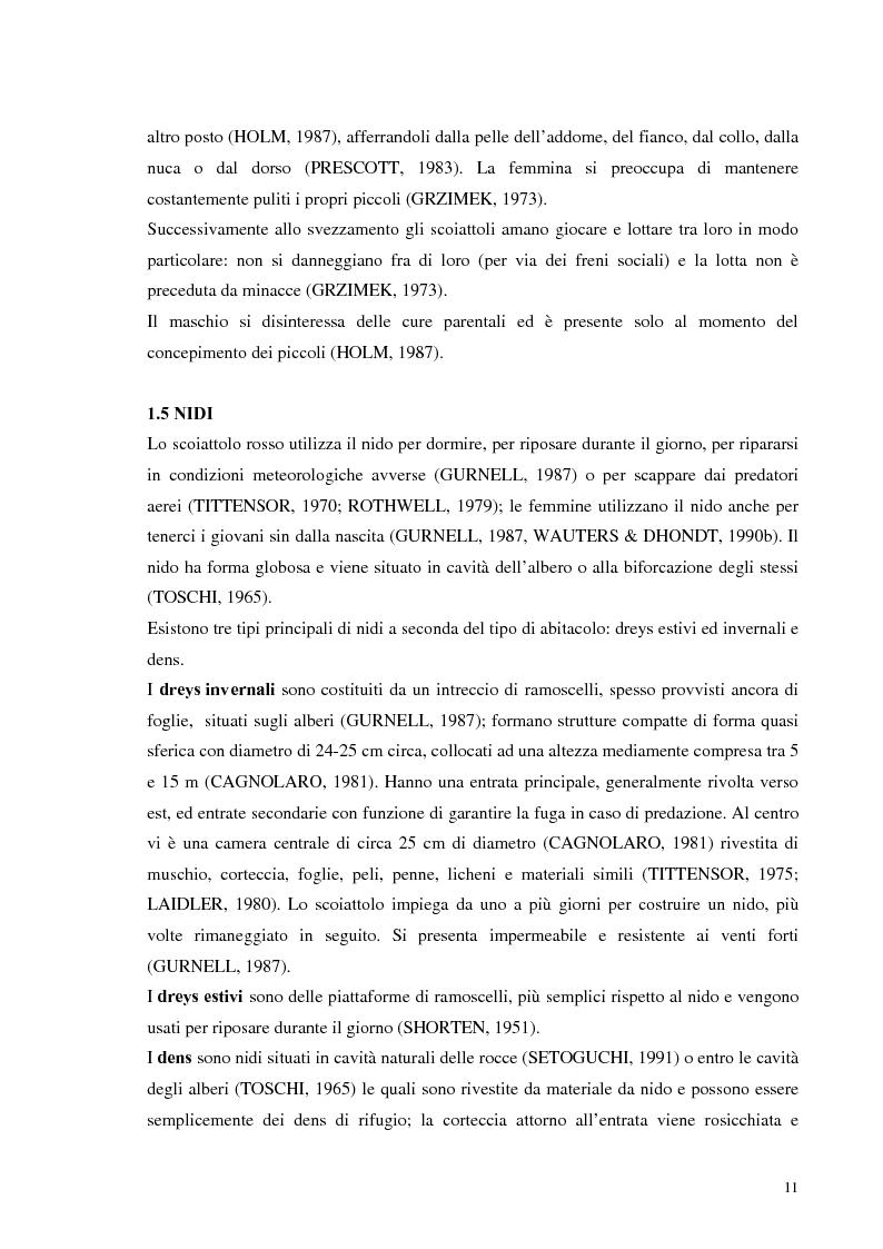 Anteprima della tesi: Nuovi dati sul comportamento di Sciurus vulgaris merdionalis in Calabria, Pagina 11