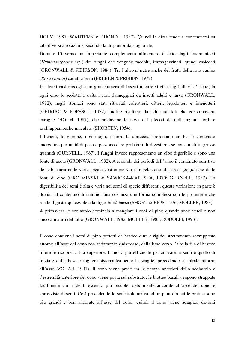 Anteprima della tesi: Nuovi dati sul comportamento di Sciurus vulgaris merdionalis in Calabria, Pagina 13