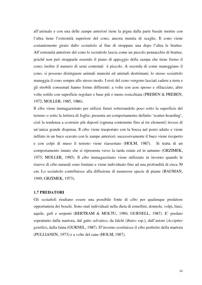 Anteprima della tesi: Nuovi dati sul comportamento di Sciurus vulgaris merdionalis in Calabria, Pagina 14