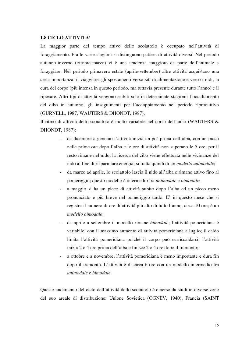 Anteprima della tesi: Nuovi dati sul comportamento di Sciurus vulgaris merdionalis in Calabria, Pagina 15