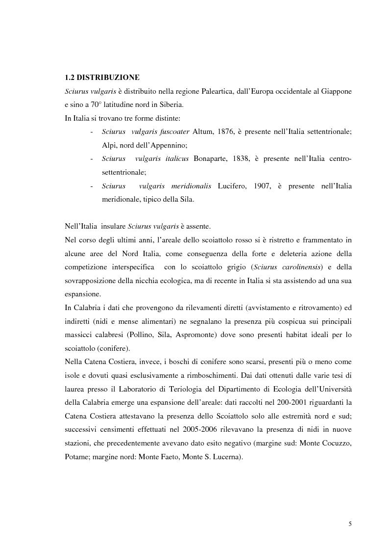 Anteprima della tesi: Nuovi dati sul comportamento di Sciurus vulgaris merdionalis in Calabria, Pagina 5