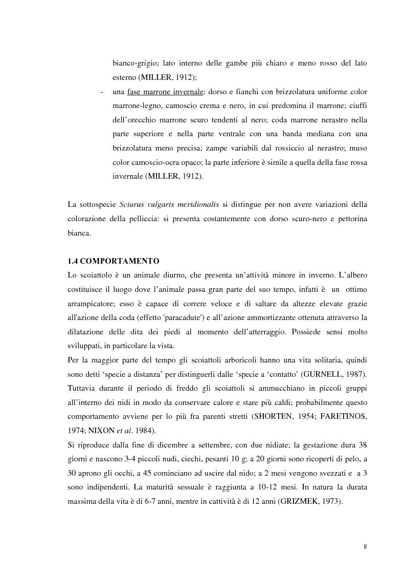 Anteprima della tesi: Nuovi dati sul comportamento di Sciurus vulgaris merdionalis in Calabria, Pagina 8