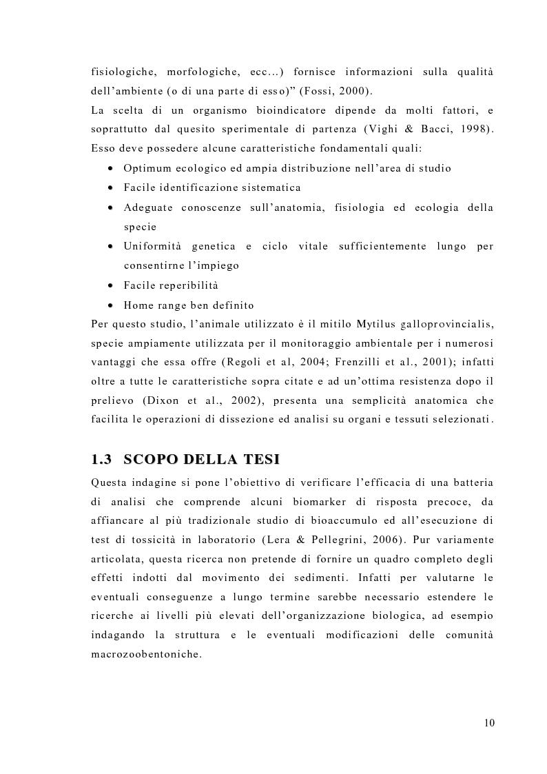 Anteprima della tesi: Valutazione degli effetti biologici della movimentazione di sabbie marine mediante l'utilizzo di biomarker cellulari in Mytilus galloprovincialis, Pagina 8