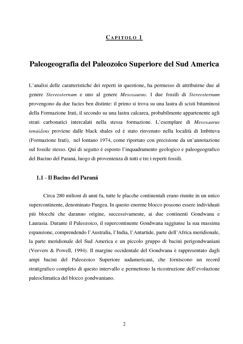 Anteprima della tesi: Analisi di rettili con adattamenti acquatici del Paleozoico Superiore del Brasile, Pagina 2