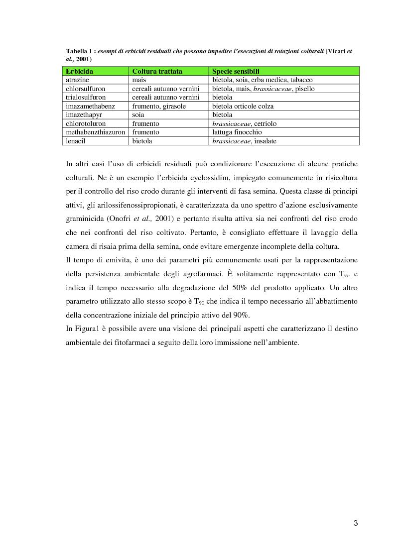 Anteprima della tesi: Comportamento ambientale dei diserbanti utilizzati in risaia, Pagina 3