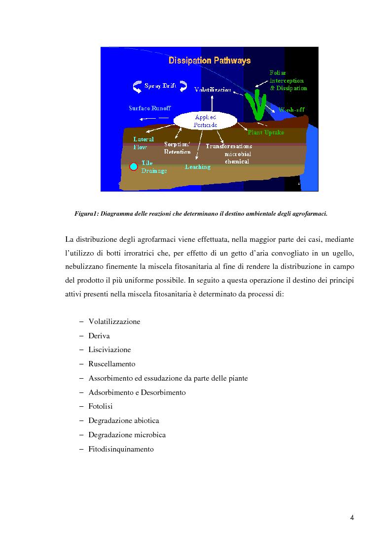 Anteprima della tesi: Comportamento ambientale dei diserbanti utilizzati in risaia, Pagina 4