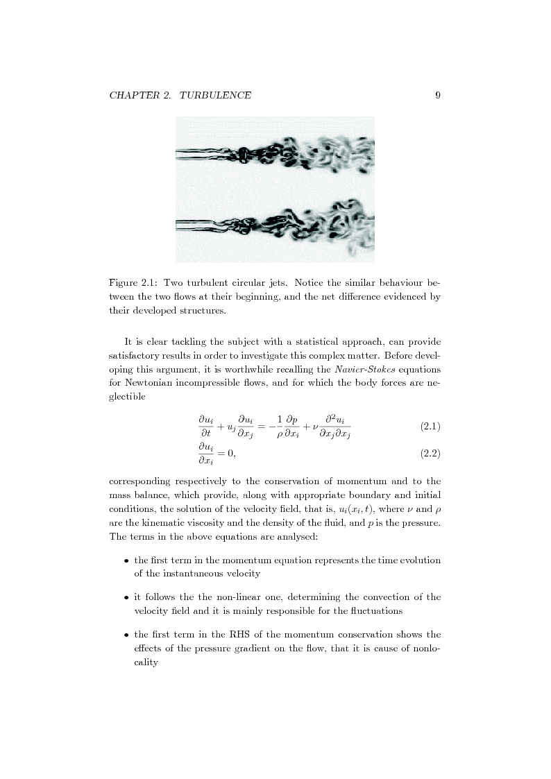 Anteprima della tesi: Direct Numerical Simulation of a turbulent premixed bunsen flame:Fractal Analysis of the flame front, Pagina 4
