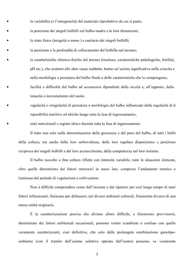 Anteprima della tesi: Caratterizzazione di tipi di aglio (Allium sativum L.) diffusi in Sicilia, Pagina 2