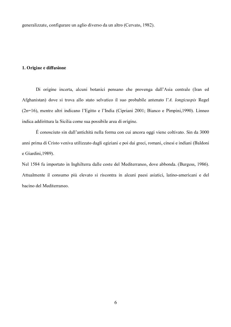 Anteprima della tesi: Caratterizzazione di tipi di aglio (Allium sativum L.) diffusi in Sicilia, Pagina 3