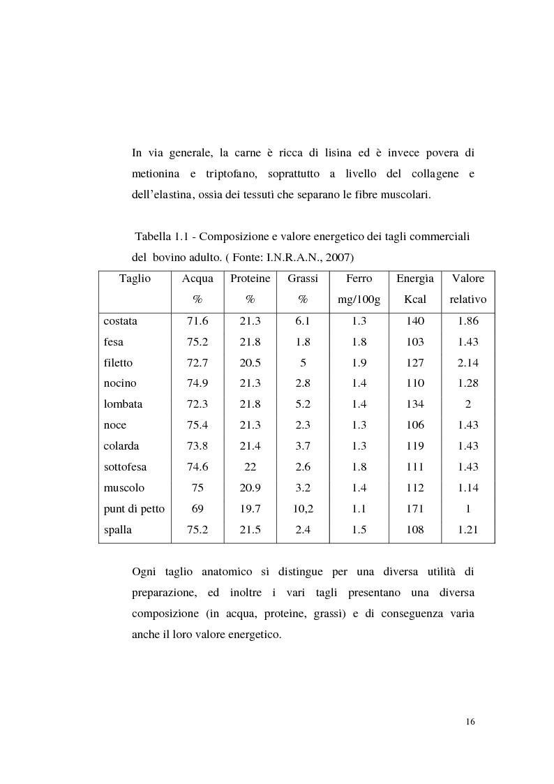 Anteprima della tesi: Sostenibilità zootecnica in ordinamenti produttivi del Mezzogiorno continentale: Podolica e Marchigiana, Pagina 11