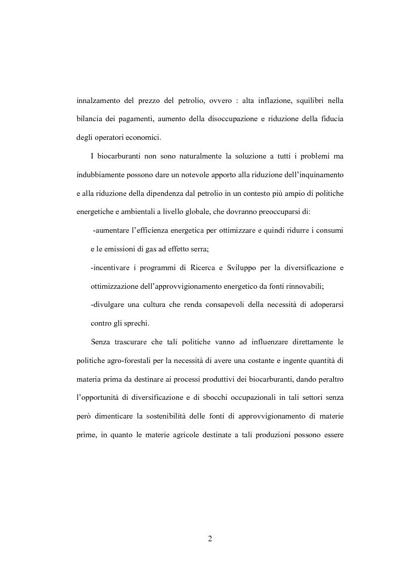 Anteprima della tesi: I biocarburanti, Pagina 2