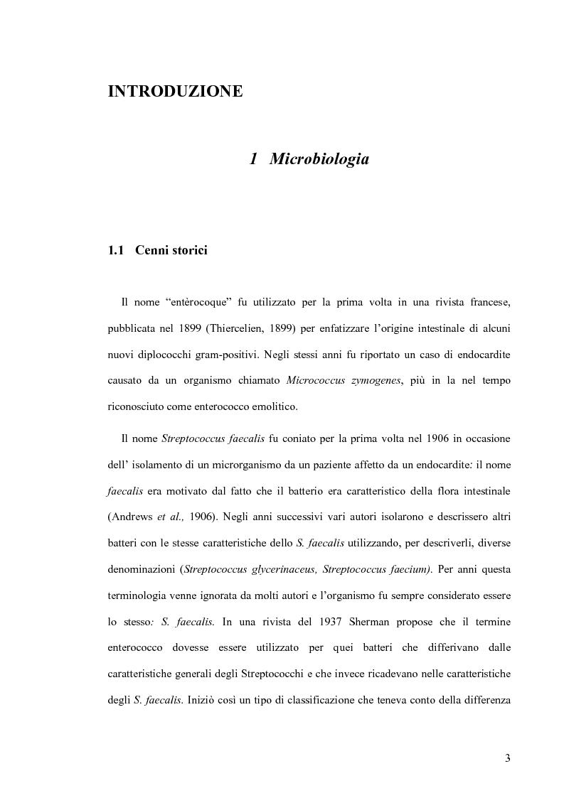 Anteprima della tesi: Identificazione e tipizzazione molecolare di enterococchi vancomicina resistenti (VRE) nell'Azienda Ospedaliera San Camillo-Forlanini, Pagina 1