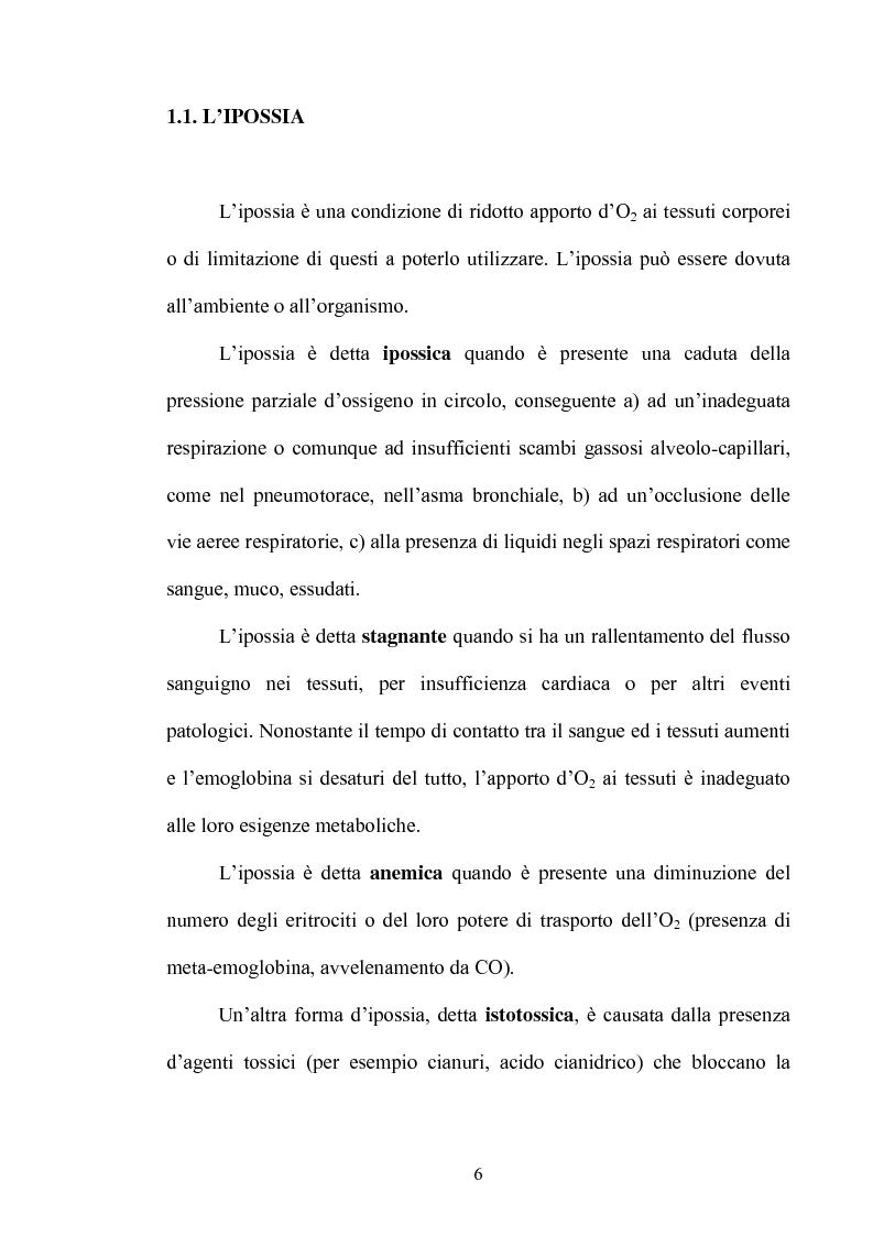 Anteprima della tesi: Le risposte adattative all'ipossia: dagli animali marini all'uomo, Pagina 6