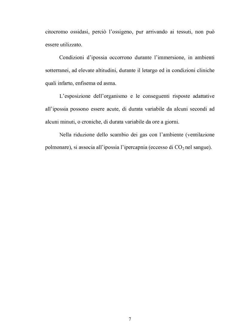 Anteprima della tesi: Le risposte adattative all'ipossia: dagli animali marini all'uomo, Pagina 7