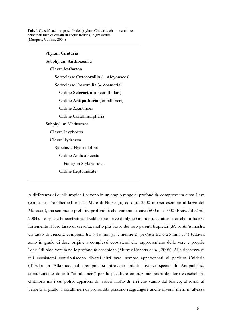 Anteprima della tesi: Habitat Mapping e Visual Census nell'area a coralli profondi di Santa Maria di Leuca (Mar Ionio Settentrionale), Pagina 2