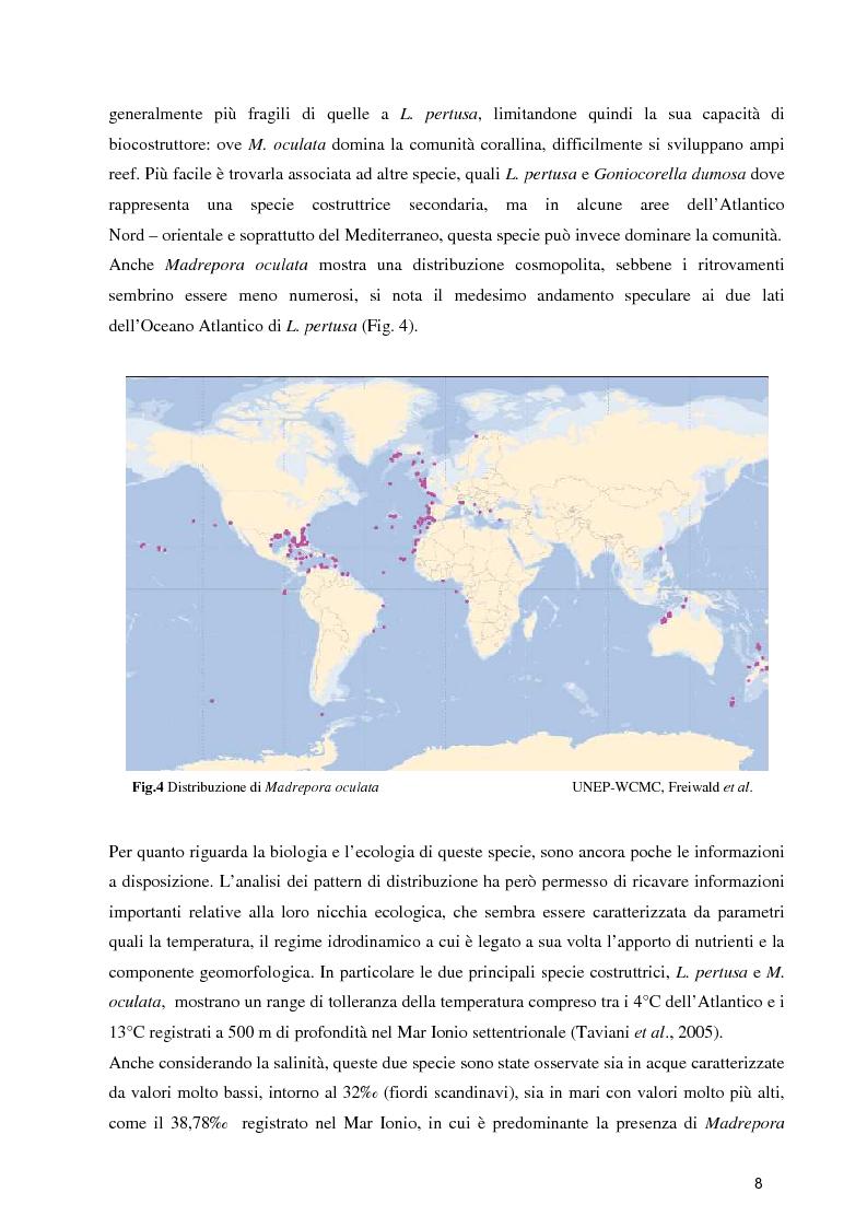 Anteprima della tesi: Habitat Mapping e Visual Census nell'area a coralli profondi di Santa Maria di Leuca (Mar Ionio Settentrionale), Pagina 5